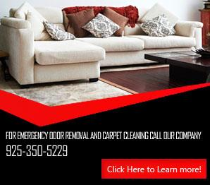 Carpet Cleaning Antioch Infographic